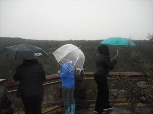 Under the umbrellas