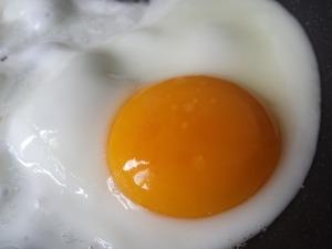 egg-806081_1280